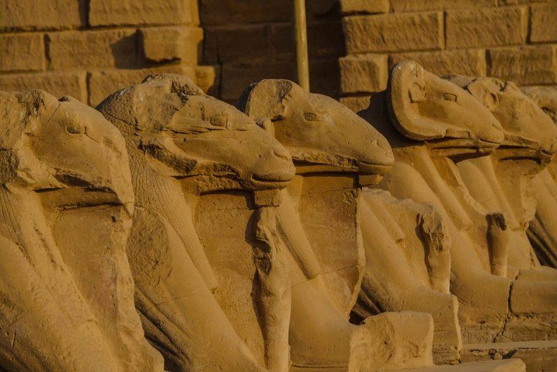 17 egipt
